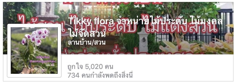 6. เพจ Tikky flora จำหน่าย ต้นไม้มงคล ไม้จัดสวน