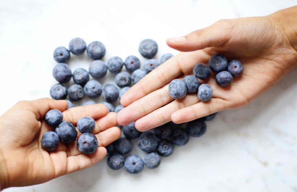 วิตามินบำรุงสายตา หรือ อาหารเสริมบำรุงสายตา สารสกัดบิลเบอร์รี่ (Bilberries Extract)