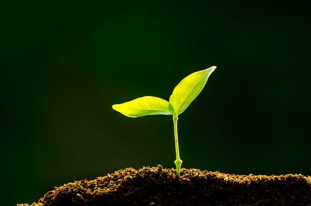 จุดเริ่มต้นของ เว็บไซต์ เกษตร ทูเดย์