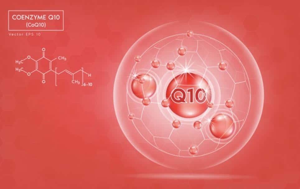 มาทำความรู้จักกับ Coenzyme Q10 กันสักนิด  Coenzyme Q10 คือ